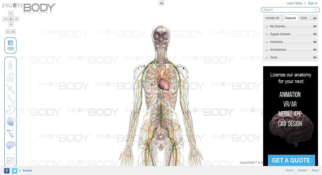 15 WebGL Medical Visualization Projects