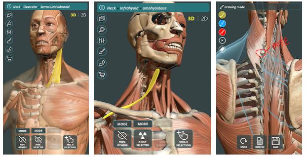 8- Visual Anatomy 3D | Human